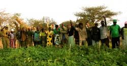 Ohana Amani farm group