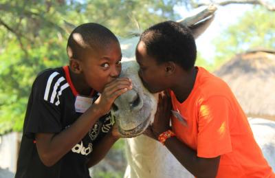 Children kissing a donkey