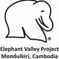 E.L.I.E. Logo