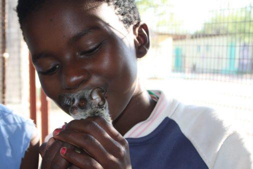 child kissing an animal's head