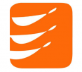 VFV Logo